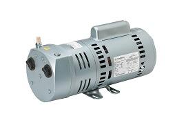 Dry Rotary Vane Pump, 3/4 HP, 115/230 Volt